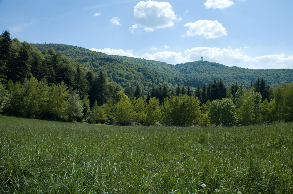 opis_PP_Medvednica_panorama-DSC_3708-245