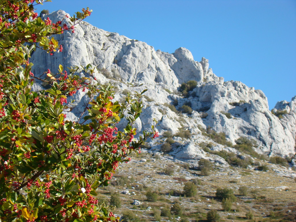 opis_PP_Velebit_Picture 011