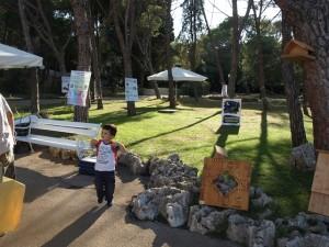 Centralni dio otoka Veliki Brijun na kojem se odvija manifestacija
