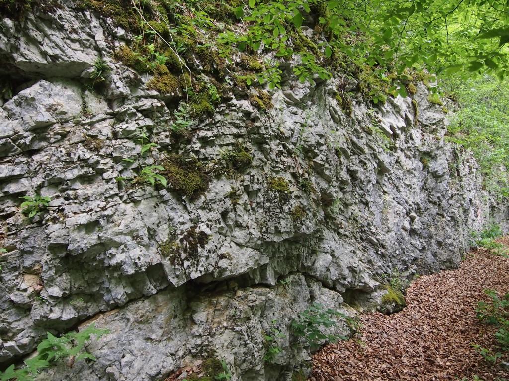 program_NP_Plitvička_jezera_kartolog_Jurske karbonatne naslage-potok Plitvica